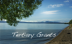 TertiaryGrants